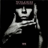 The-Teardrop-Explodes-Wilder