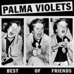 palma_violets_1.jpg