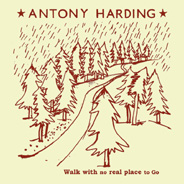 antony_harding_walk.jpg