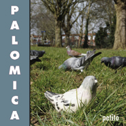 palomica.jpg