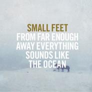 small_feet.jpg